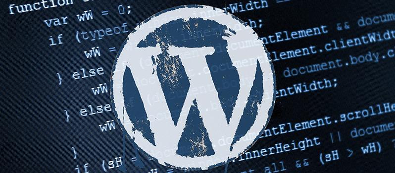 WordPress Admin Şifremi Unuttum! Nasıl Bulabilirim?
